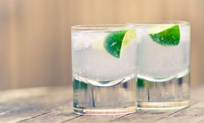 Как правильно пить джин с тоником