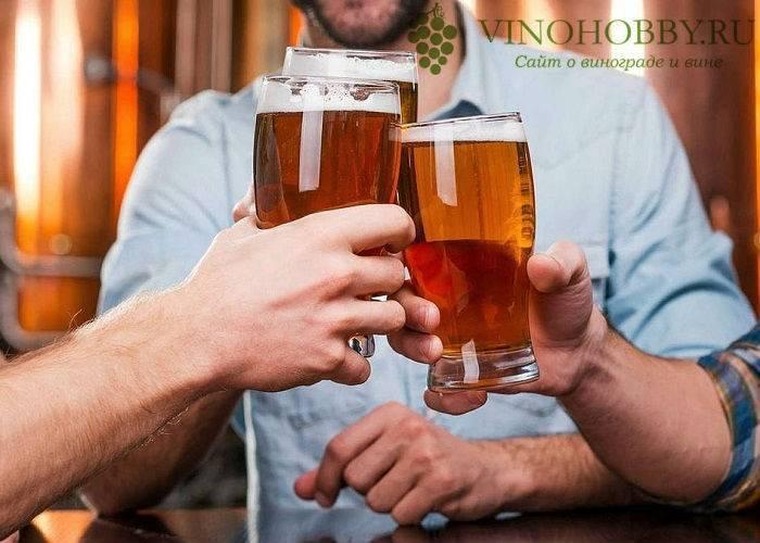 Можно ли пить пиво если принимаешь антибиотики