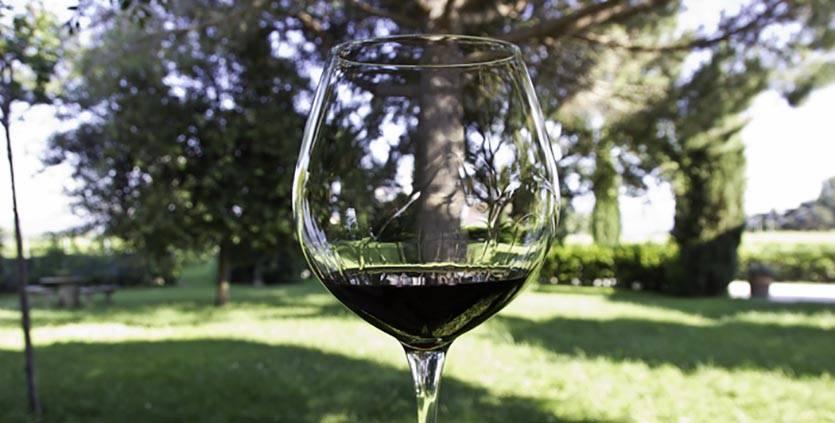 Как проверить белое вино на натуральность