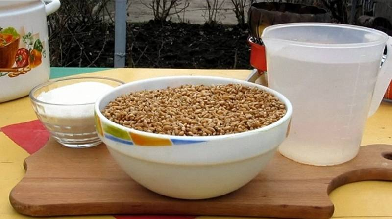 Как сделать водку из пшеницы