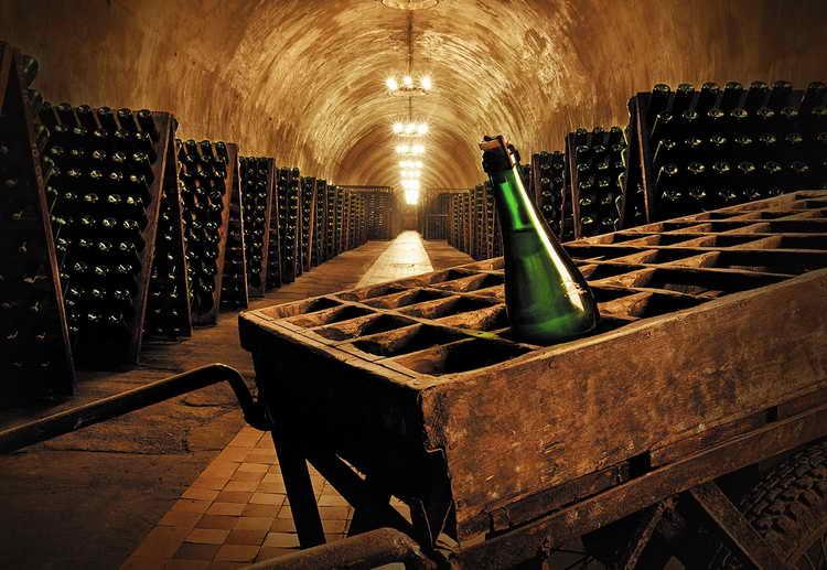 Санто стефано шампанское процент алкоголя