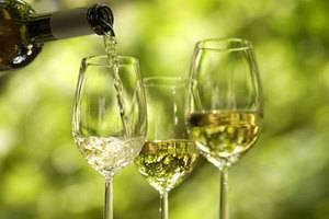 Шардоне вино описание