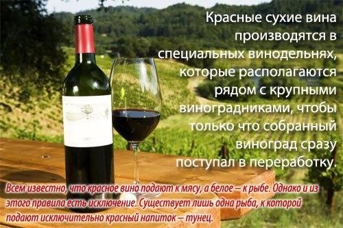 Лыхны вино калорийность