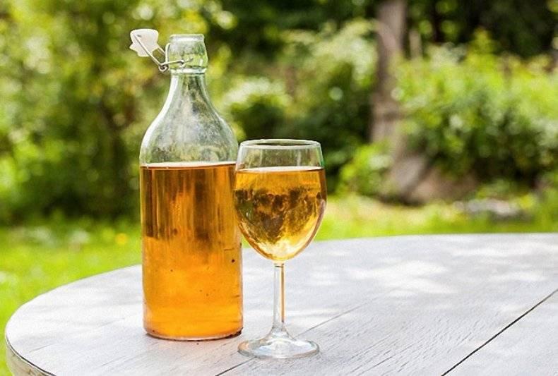 Как остановить брожение домашнего виноградного вина