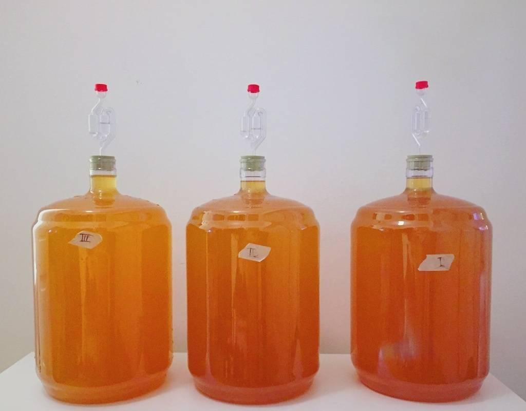 Кальвадос чей национальный напиток