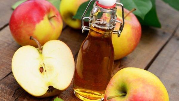 Вино домашнее из яблок простой рецепт приготовления