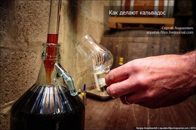 Кальвадос фото бутылок