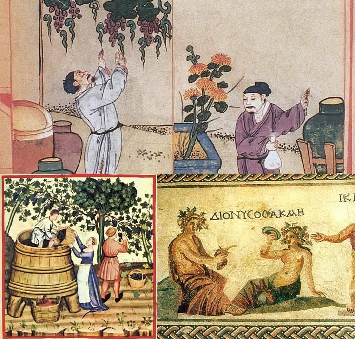 Откуда произошло вино
