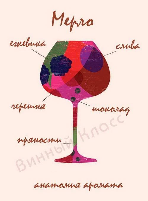 Красное сухое вино merlot