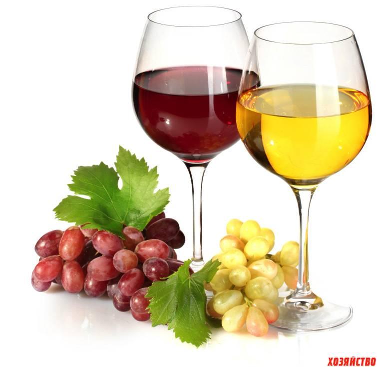 Где изобрели вино