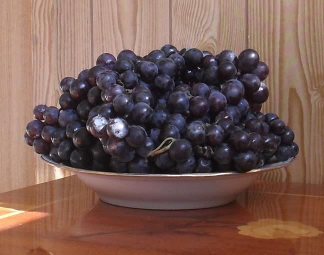 Виноградный сок из изабеллы в домашних условиях
