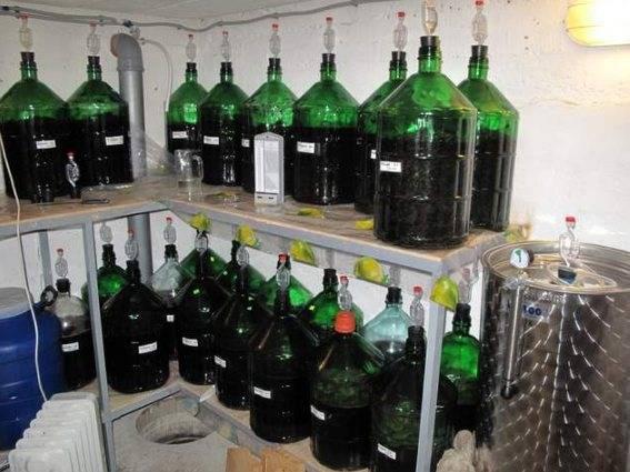 Как сделать домашнее вино из черноплодной рябины