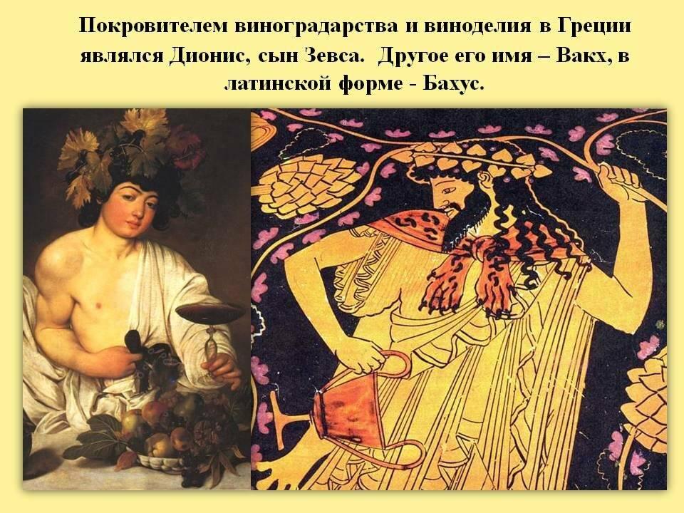 Вино история происхождения