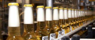 Corona extra как правильно пить