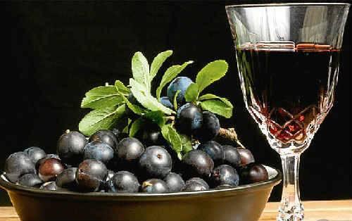 Черноплодная рябина на спирту в домашних условиях