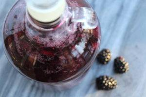 Вино из ежевики в домашних условиях рецепт
