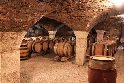 Белое вино из бургундии