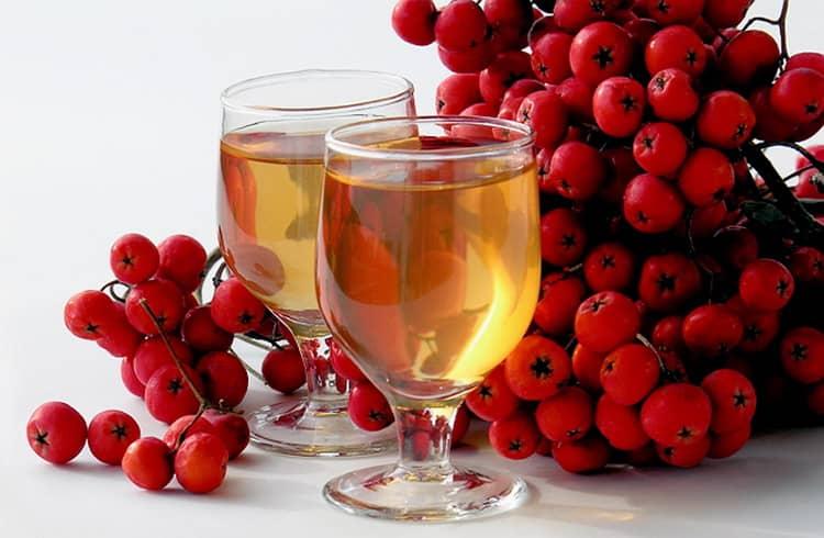 Как приготовить вино из красной рябины