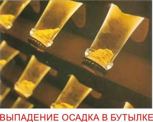 Производство шампанского во франции