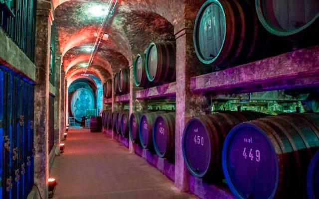 Белые вина германии