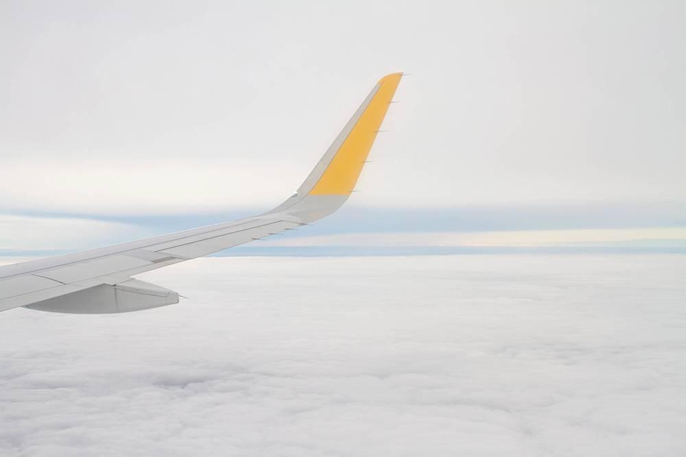 Самолет или коньяк