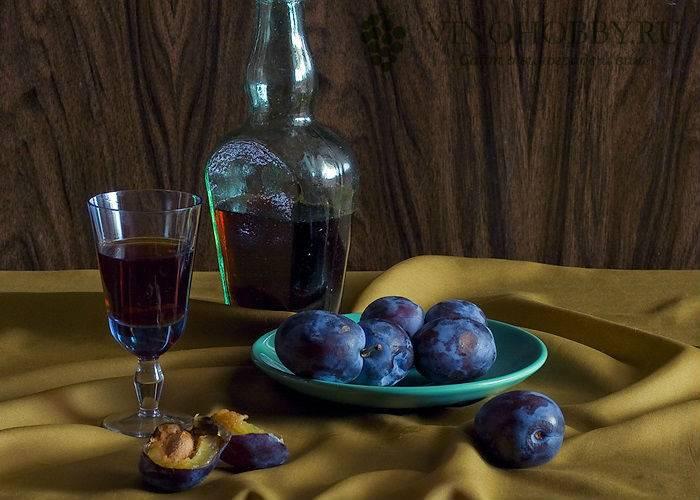 Настойка из сливы на водке в домашних