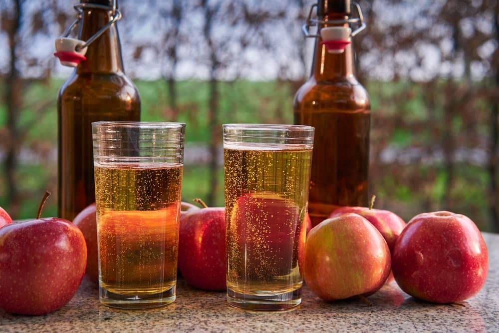 Сколько должно бродить яблочное вино