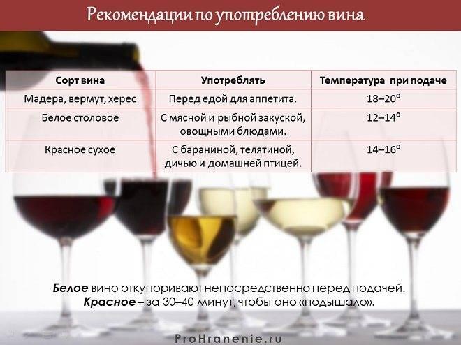 Хранят ли вино в холодильнике