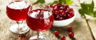 Клюквенная настойка на спирту в домашних условиях